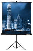 [LMV-100102] Экран на штативе Master View 153x153 см Matte White FiberGlass