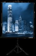 [LMV-100109] Экран на штативе Master View 203x203 см Matte White FiberGlass